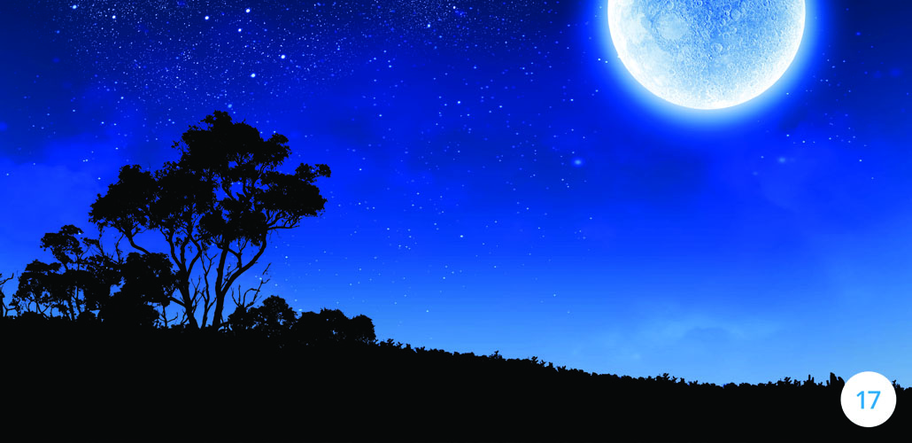 Blue Moon Results: 13 Unusual Traits of High Achievers
